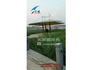 菏泽郓城膜结构景观